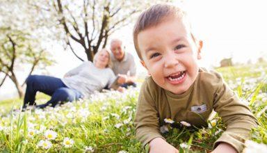 Parentalidade e os direitos concedidos aos avós